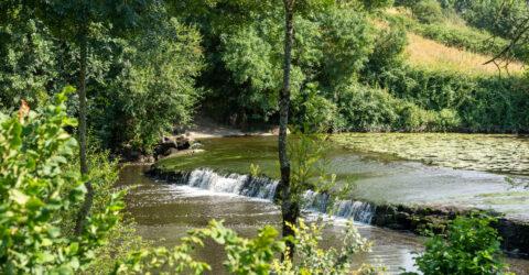 Image : Rivière - Saint-Hilaire-de-Loulay - Montaigu-Vendée